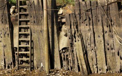 Wood Seawall Design