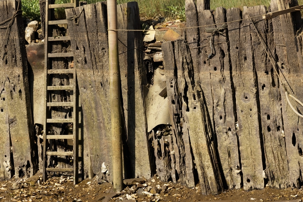 Wood Seawall Extreme Example