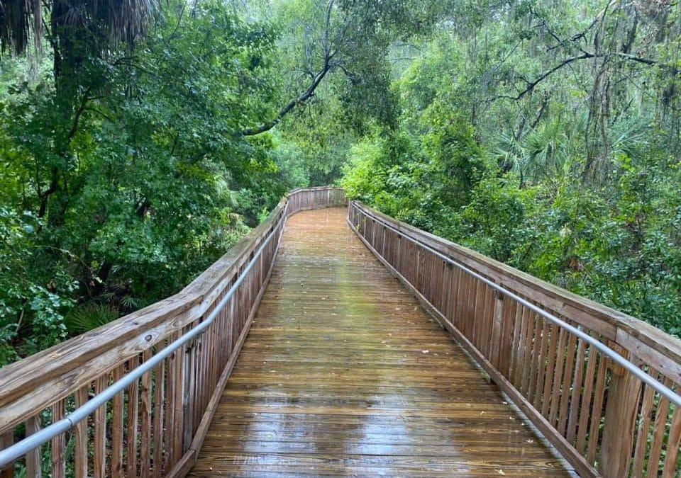 Fishhawk Ranch Boardwalk